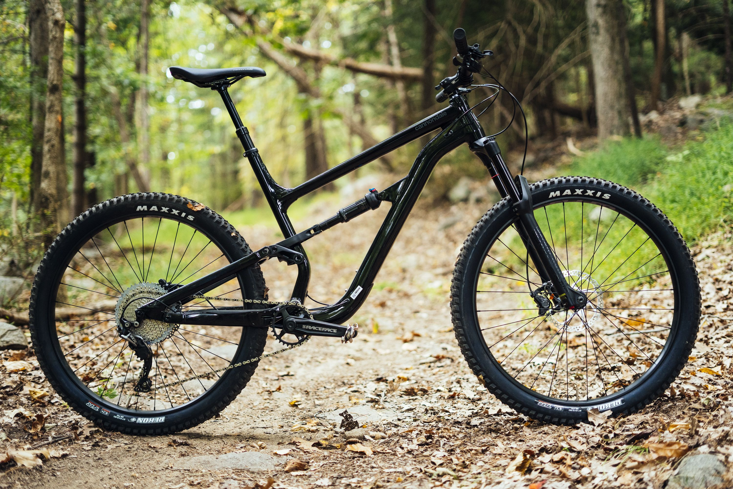 The Ultimate Beginner's Guide to Finding A Bike
